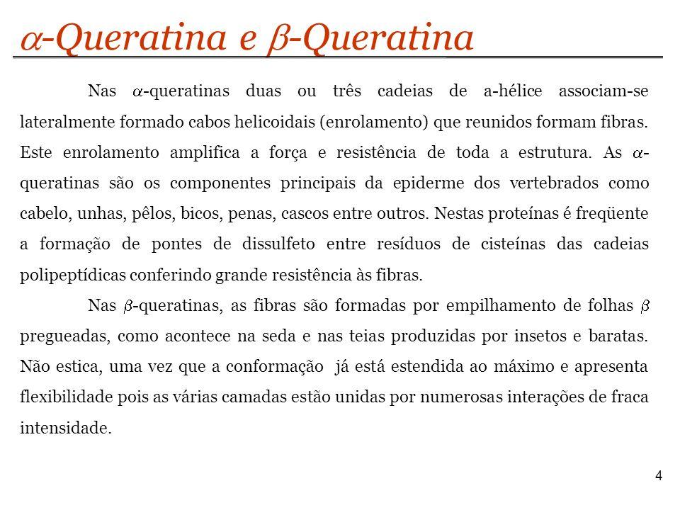a-Queratina e b-Queratina