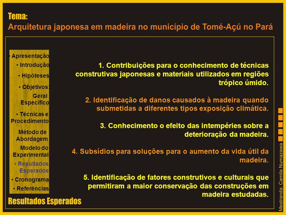 4. Subsídios para soluções para o aumento da vida útil da madeira.