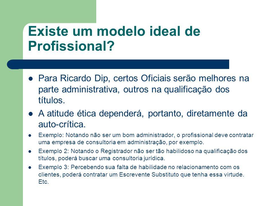 Existe um modelo ideal de Profissional