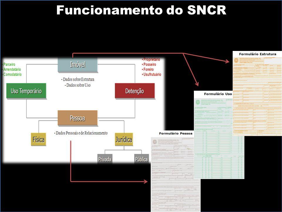 Funcionamento do SNCR