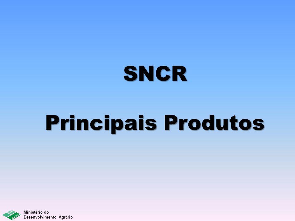 SNCR Principais Produtos