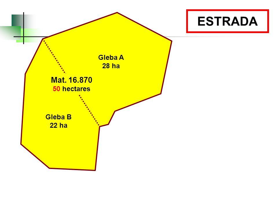 ESTRADA Gleba A 28 ha Mat. 16.870 50 hectares Gleba B 22 ha 39