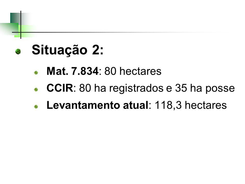 Situação 2: Mat. 7.834: 80 hectares