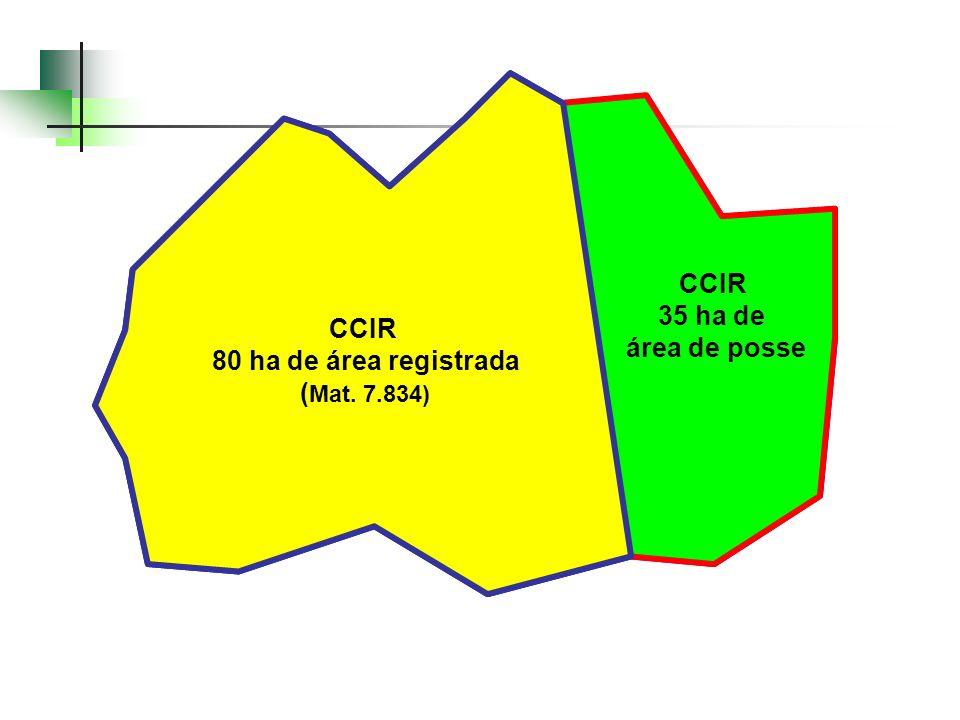 CCIR 35 ha de. área de posse. Mat. 7.834: 80 ha. CCIR: 80 + 35 = 115 ha. Geo: 118,3 ha. CCIR. 80 ha de área registrada.