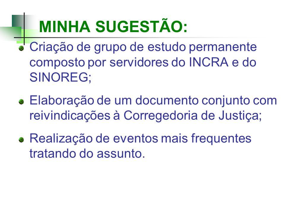 MINHA SUGESTÃO:Criação de grupo de estudo permanente composto por servidores do INCRA e do SINOREG;
