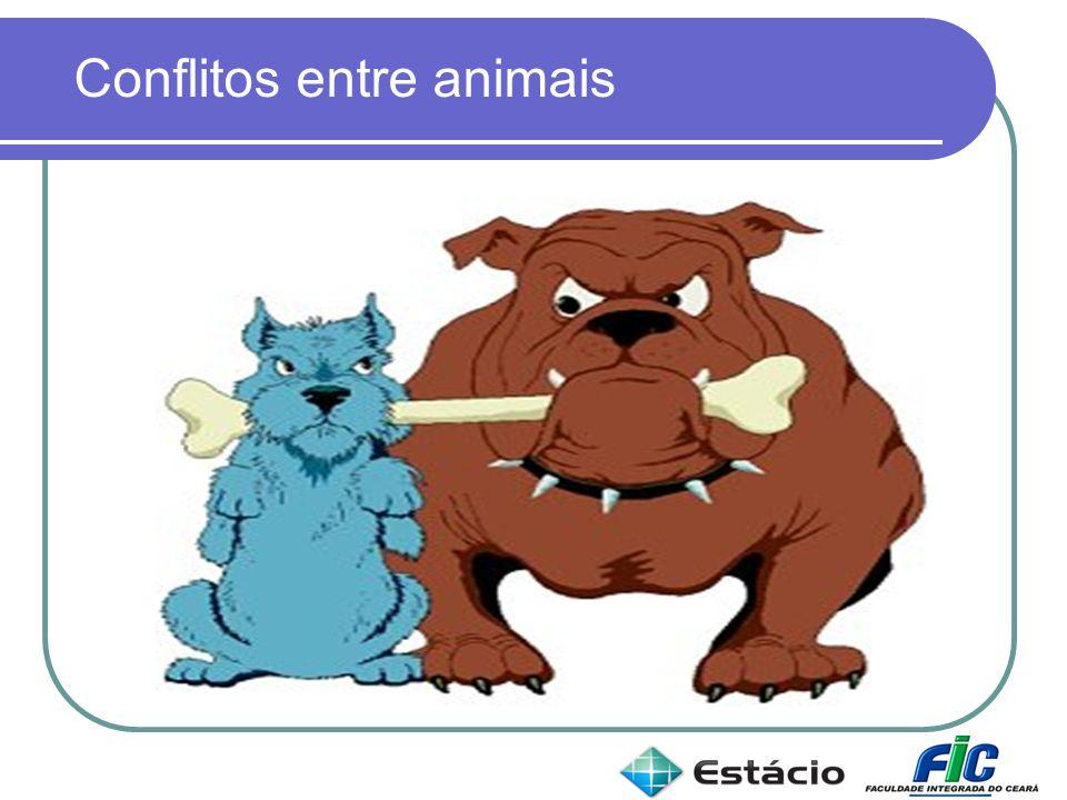 Conflitos entre animais