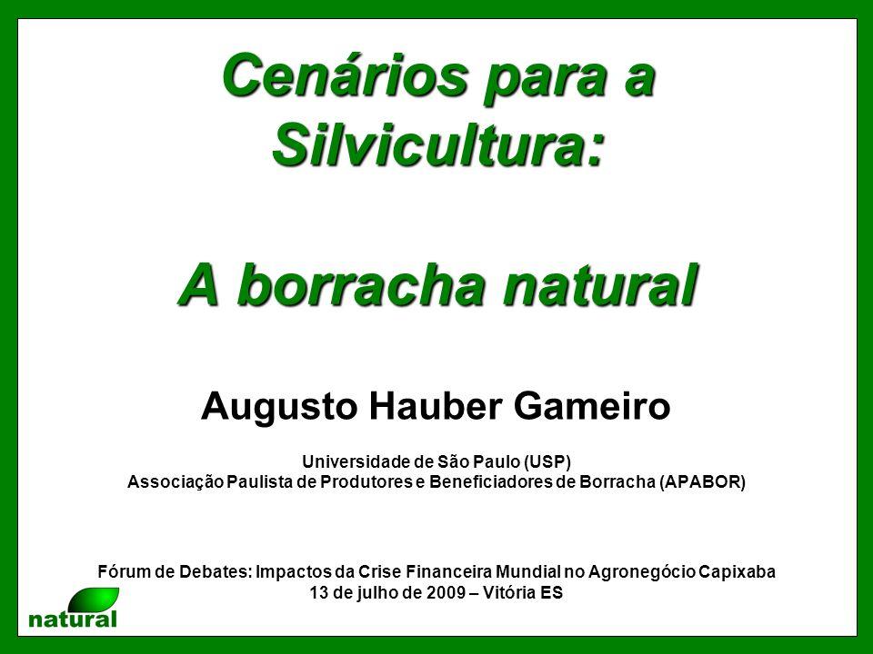 Cenários para a Silvicultura: A borracha natural