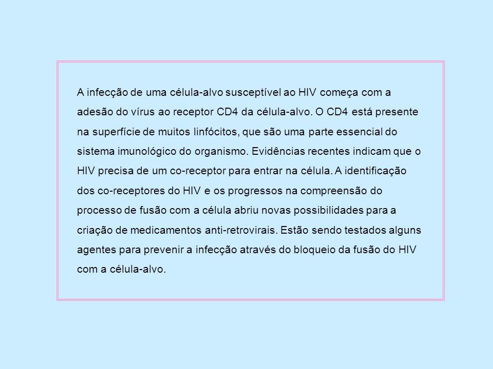 A infecção de uma célula-alvo susceptível ao HIV começa com a adesão do vírus ao receptor CD4 da célula-alvo.