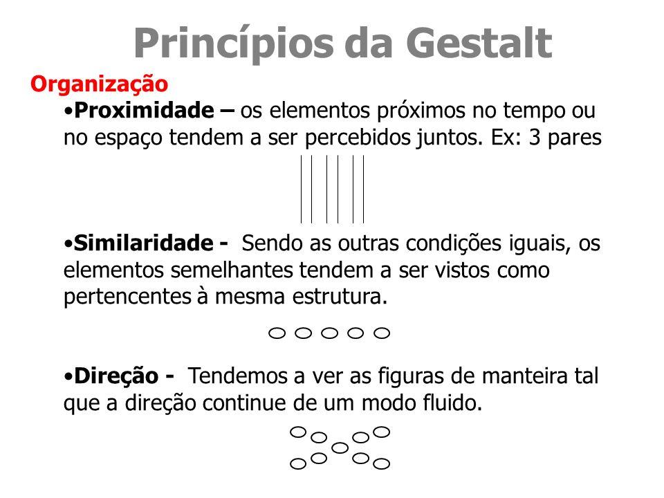 Princípios da Gestalt Organização