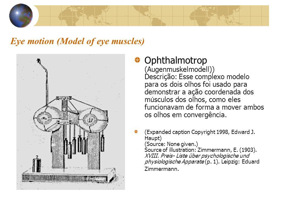 Eye motion (Model of eye muscles)
