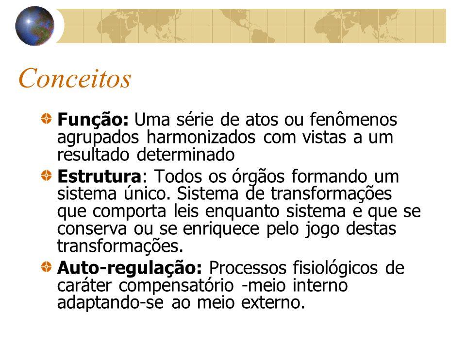 ConceitosFunção: Uma série de atos ou fenômenos agrupados harmonizados com vistas a um resultado determinado.