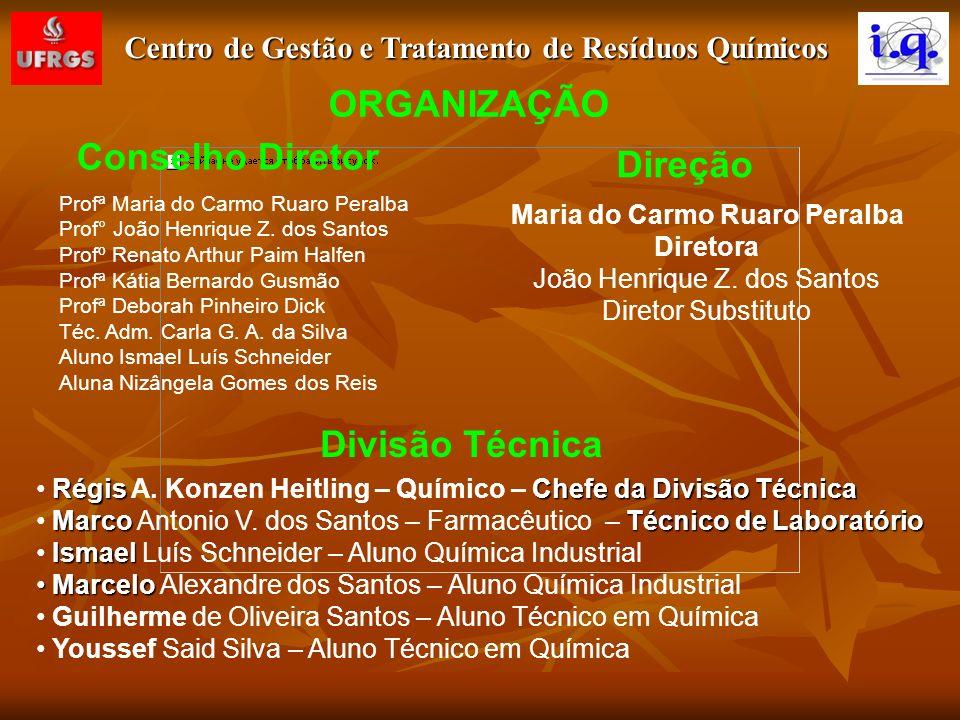 ORGANIZAÇÃO Conselho Diretor Direção Divisão Técnica