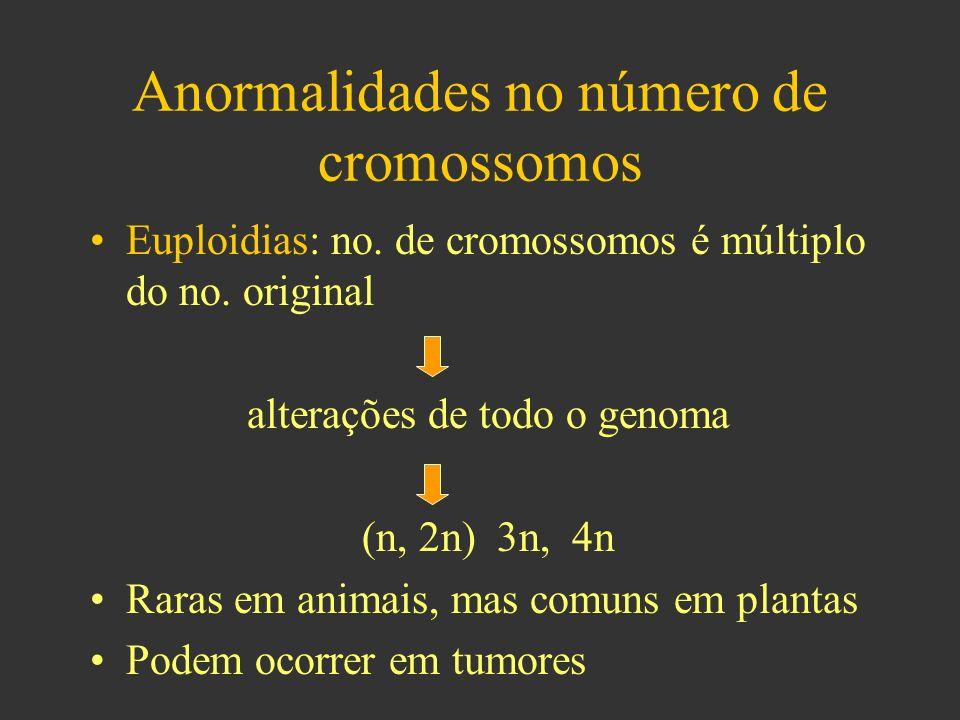Anormalidades no número de cromossomos
