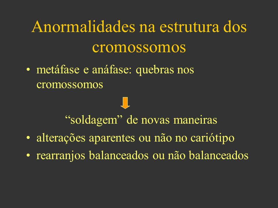 Anormalidades na estrutura dos cromossomos