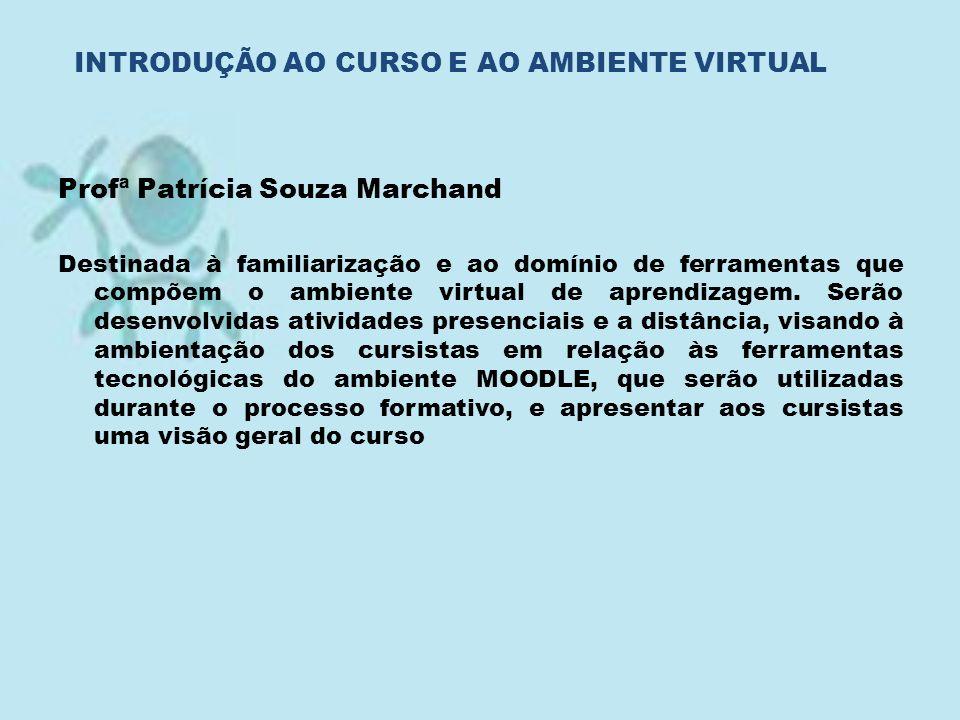 INTRODUÇÃO AO CURSO E AO AMBIENTE VIRTUAL