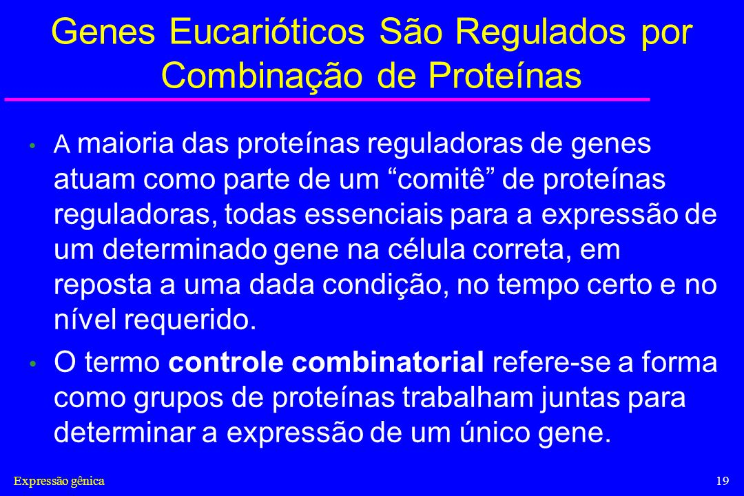 Genes Eucarióticos São Regulados por Combinação de Proteínas