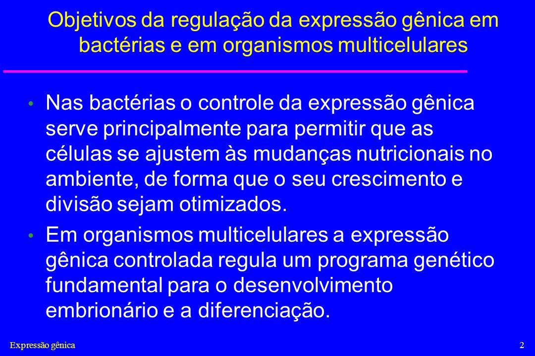 Objetivos da regulação da expressão gênica em bactérias e em organismos multicelulares