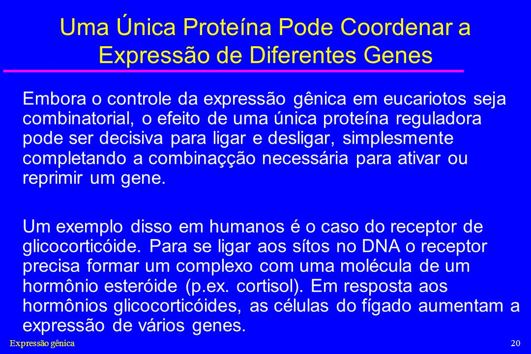 Uma Única Proteína Pode Coordenar a Expressão de Diferentes Genes