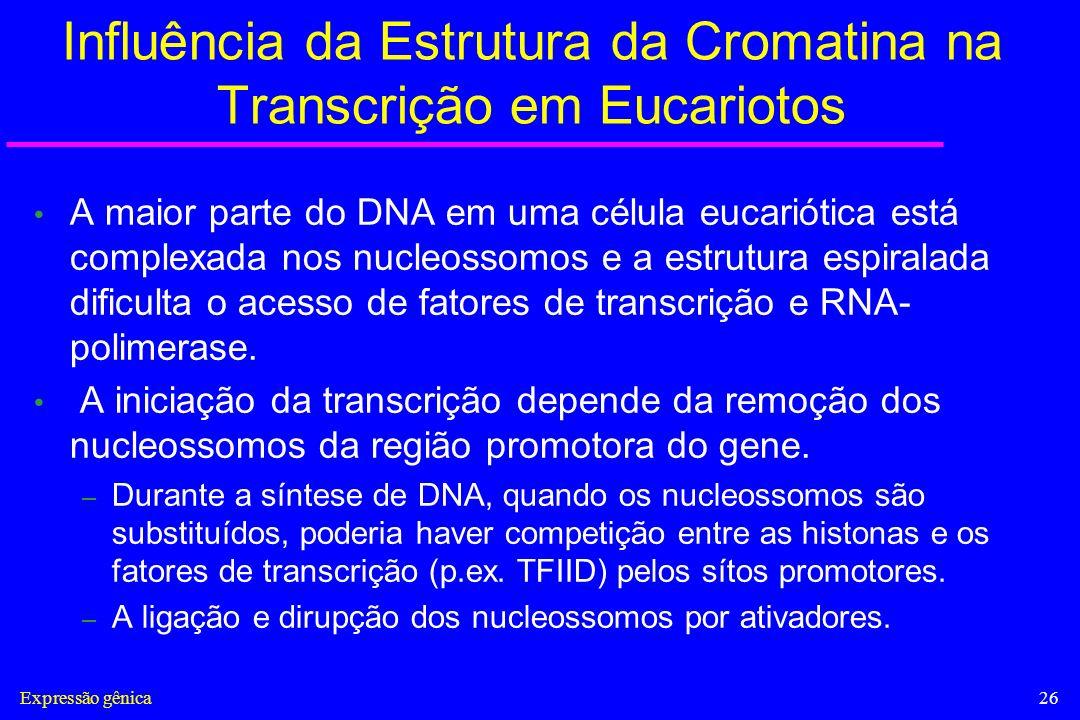 Influência da Estrutura da Cromatina na Transcrição em Eucariotos