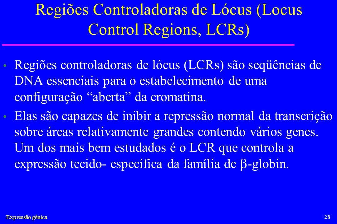 Regiões Controladoras de Lócus (Locus Control Regions, LCRs)