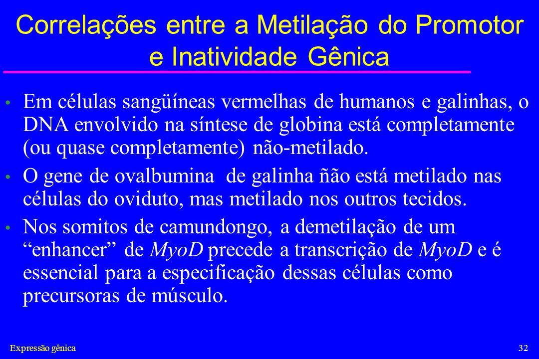 Correlações entre a Metilação do Promotor e Inatividade Gênica