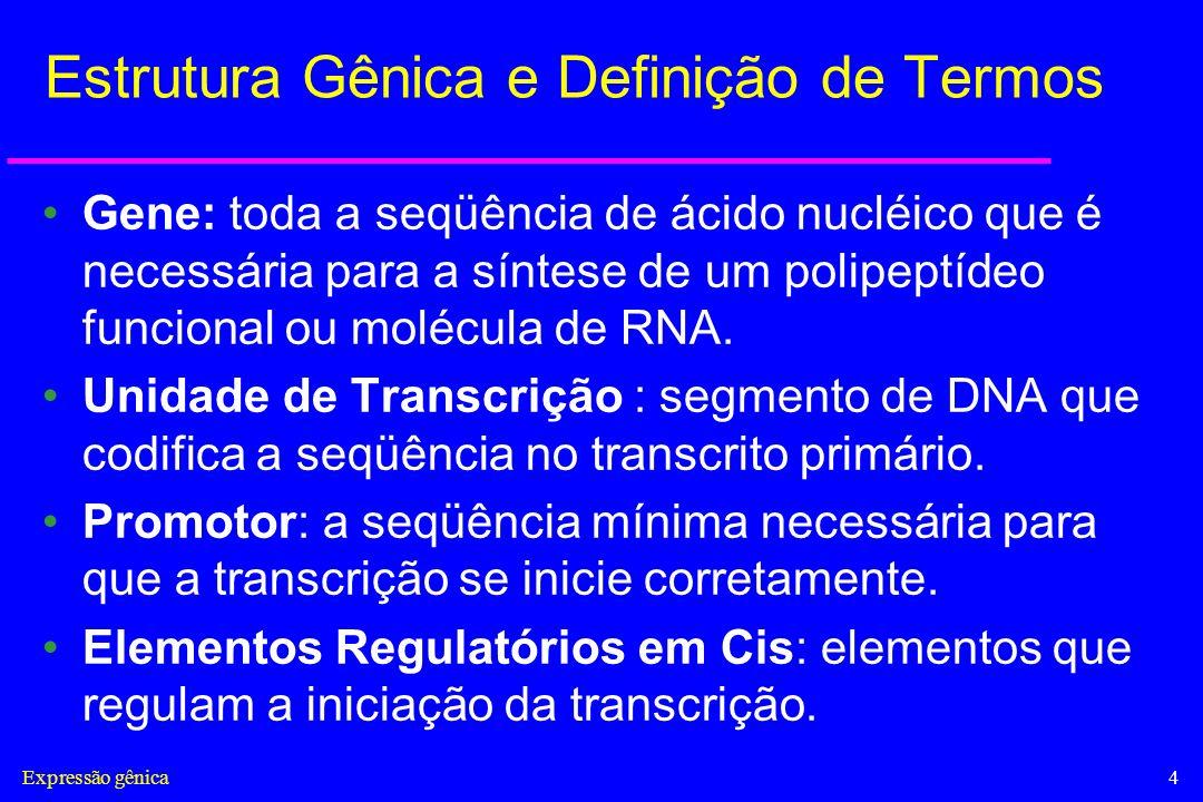 Estrutura Gênica e Definição de Termos