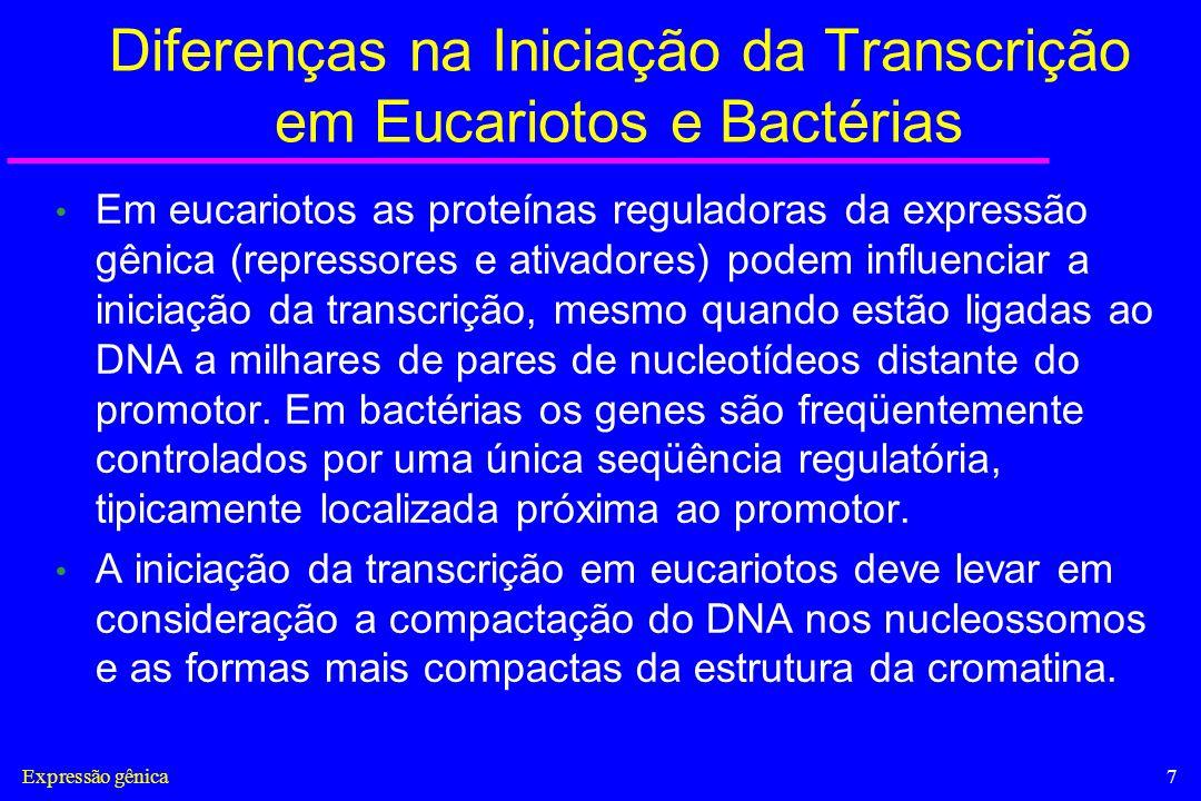 Diferenças na Iniciação da Transcrição em Eucariotos e Bactérias