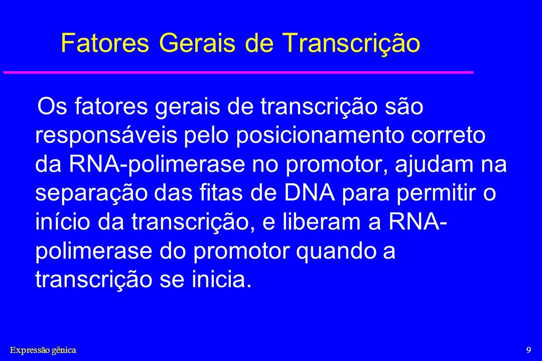 Fatores Gerais de Transcrição