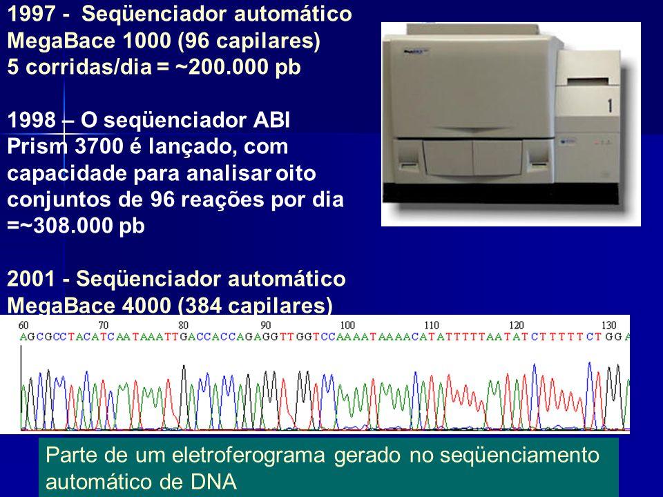 1997 - Seqüenciador automático MegaBace 1000 (96 capilares) 5 corridas/dia = ~200.000 pb 1998 – O seqüenciador ABI Prism 3700 é lançado, com capacidade para analisar oito conjuntos de 96 reações por dia =~308.000 pb 2001 - Seqüenciador automático MegaBace 4000 (384 capilares)