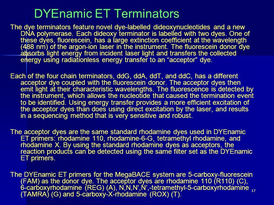 DYEnamic ET Terminators