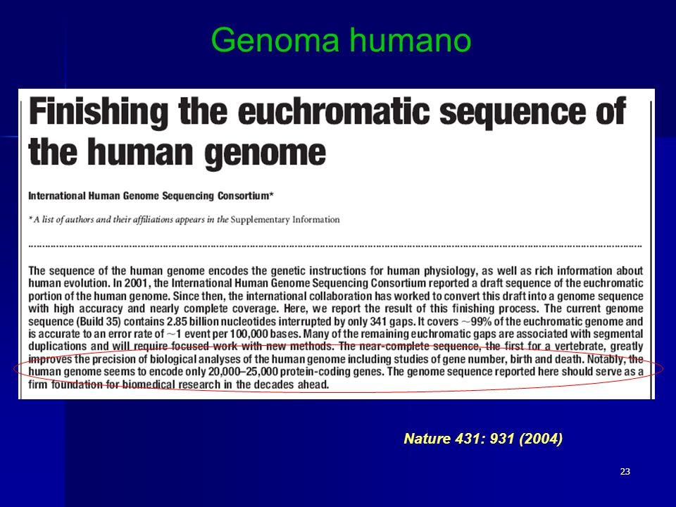 Genoma humano Nature 431: 931 (2004)