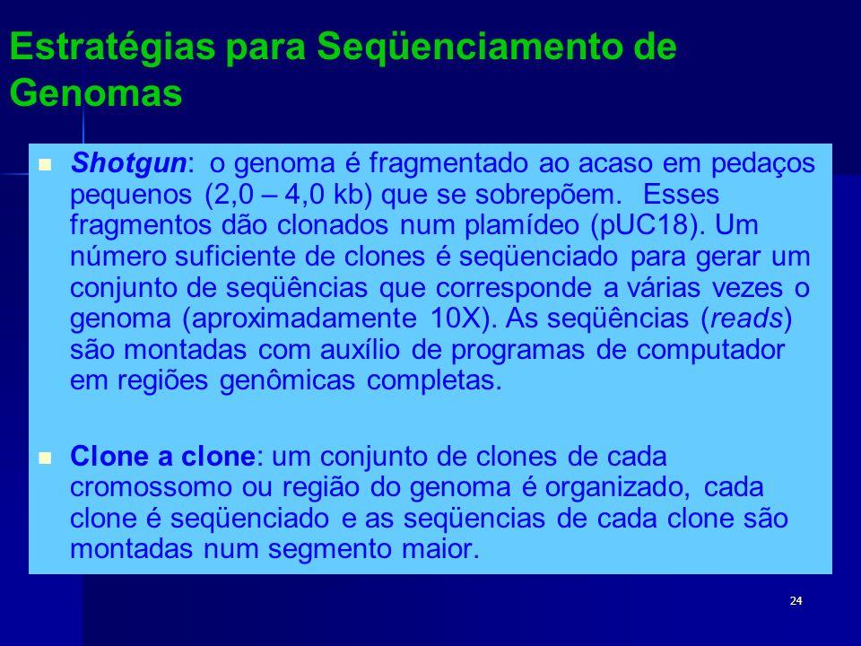 Estratégias para Seqüenciamento de Genomas
