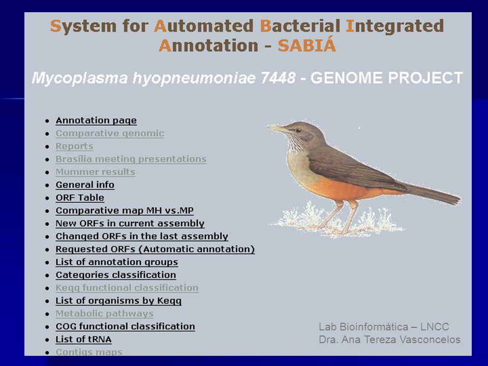 Lab Bioinformática – LNCC