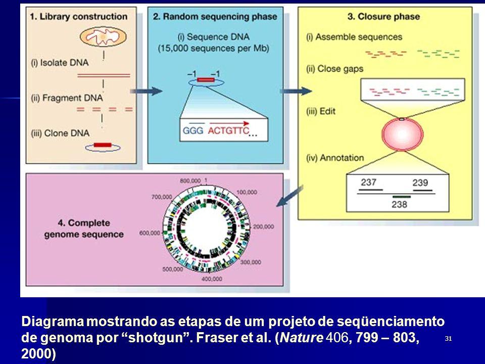 Diagrama mostrando as etapas de um projeto de seqüenciamento de genoma por shotgun .