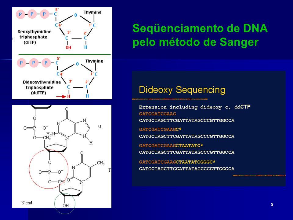 Seqüenciamento de DNA pelo método de Sanger