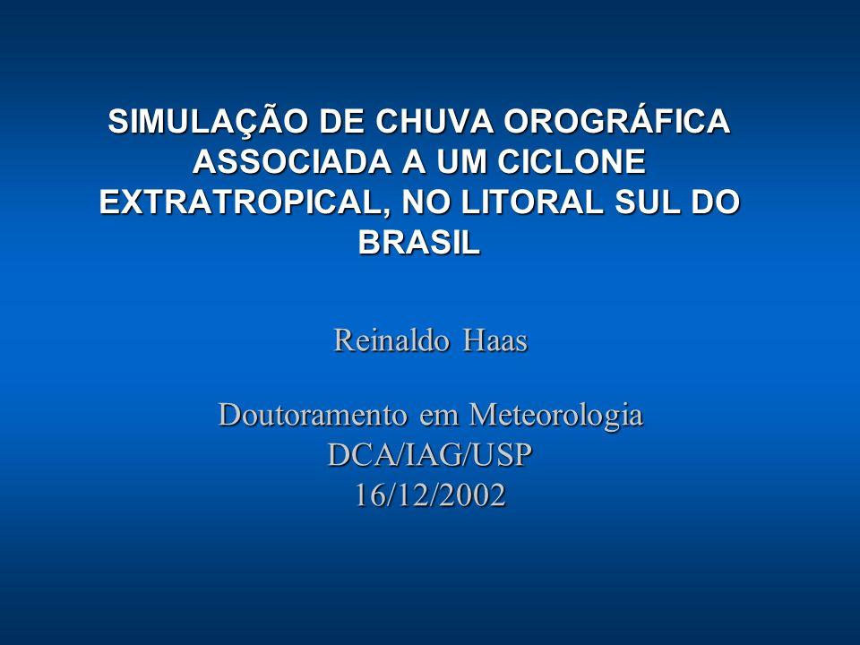 Reinaldo Haas Doutoramento em Meteorologia DCA/IAG/USP 16/12/2002