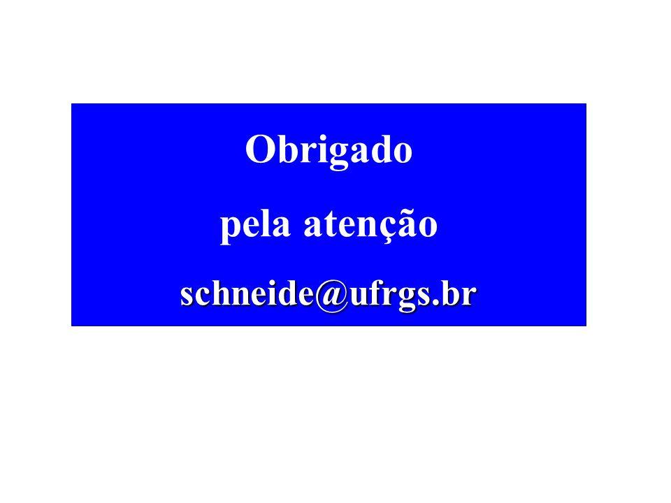 Obrigado pela atenção schneide@ufrgs.br