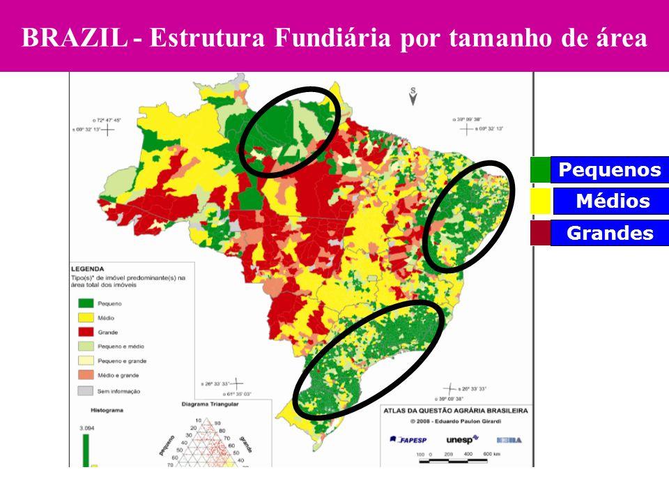 BRAZIL - Estrutura Fundiária por tamanho de área