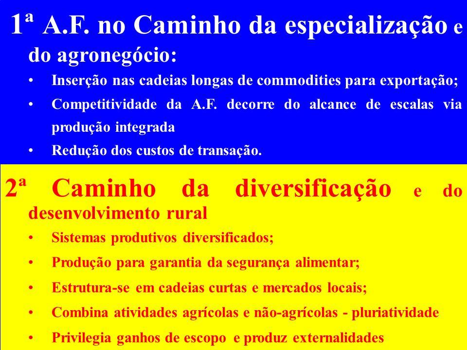 A.F. no Caminho da diversificação e do desenvolvimento rural