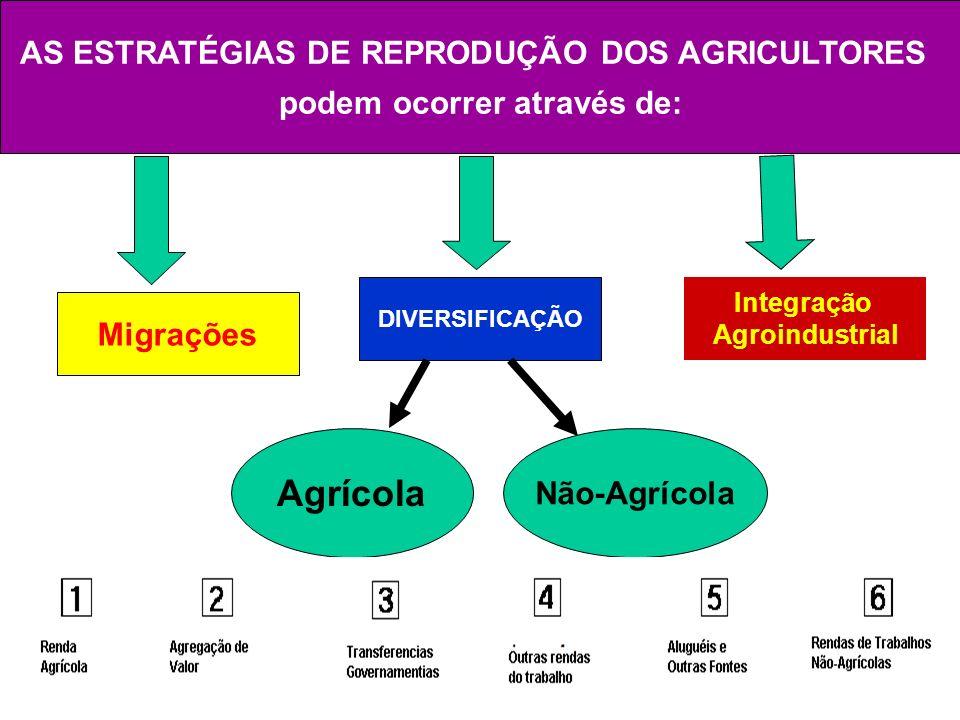 Agrícola AS ESTRATÉGIAS DE REPRODUÇÃO DOS AGRICULTORES