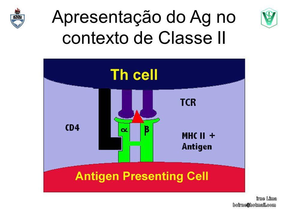 Apresentação do Ag no contexto de Classe II