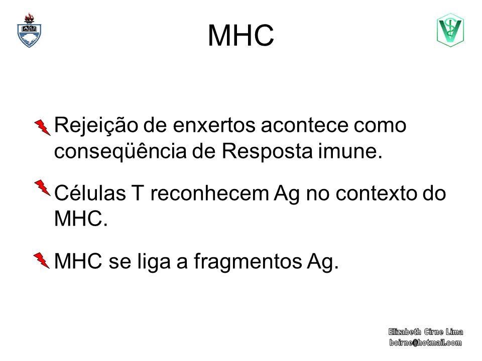 MHC Rejeição de enxertos acontece como conseqüência de Resposta imune.