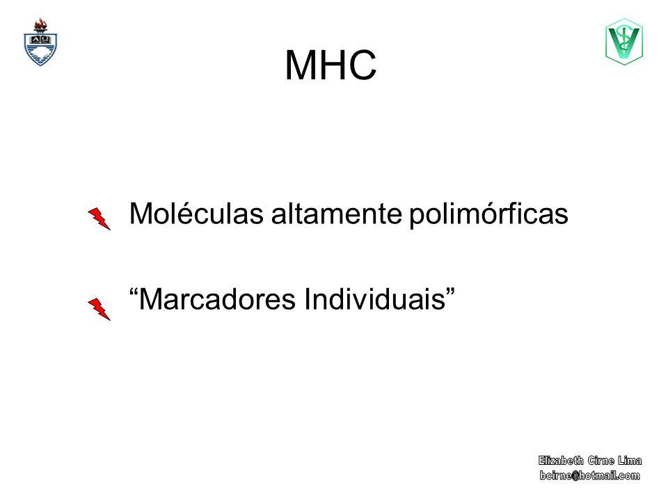 Moléculas altamente polimórficas Marcadores Individuais