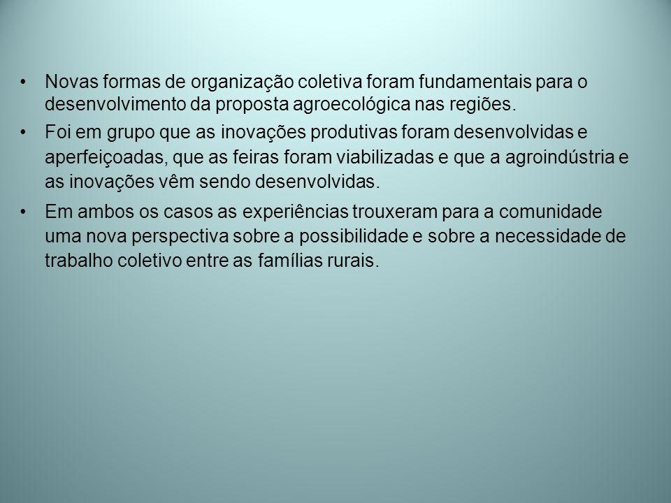 Novas formas de organização coletiva foram fundamentais para o desenvolvimento da proposta agroecológica nas regiões.