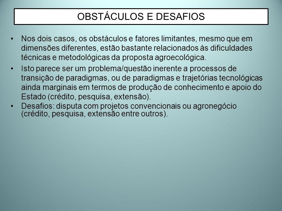 OBSTÁCULOS E DESAFIOS