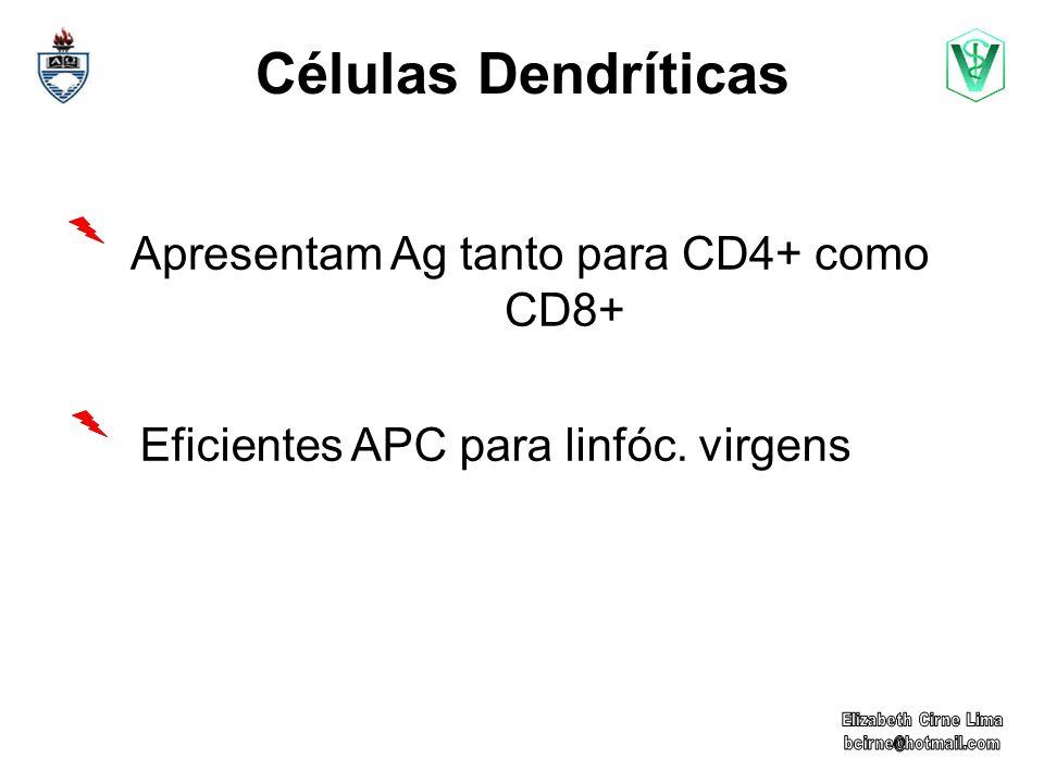 Apresentam Ag tanto para CD4+ como CD8+
