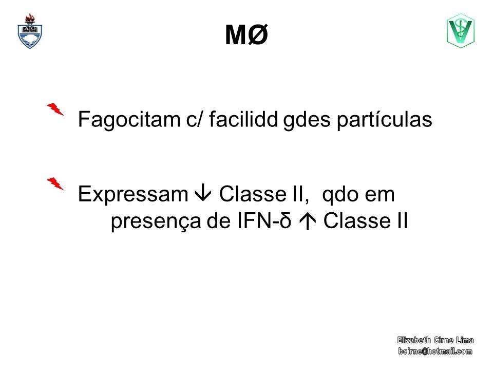 MØ Fagocitam c/ facilidd gdes partículas