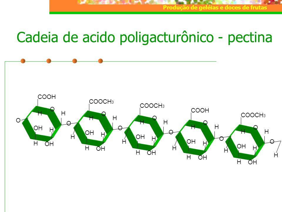 Cadeia de acido poligacturônico - pectina