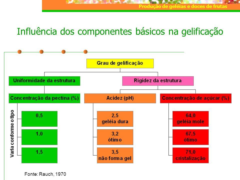 Influência dos componentes básicos na gelificação