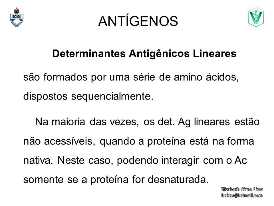 Determinantes Antigênicos Lineares